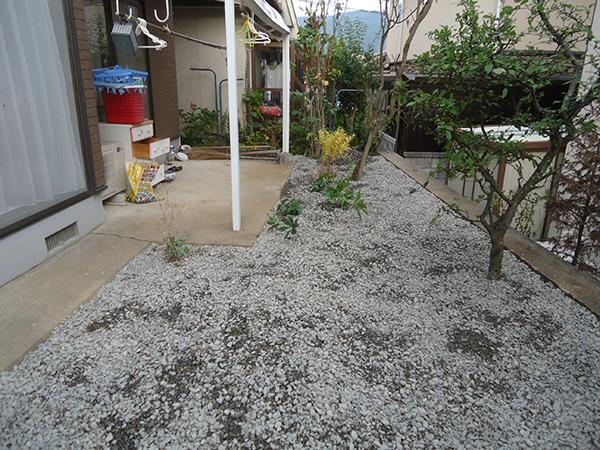 松本市 O様邸 庭木伐採